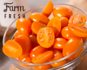 超人氣美濃橙蜜香小番茄,限時5.2折,今日結帳再享加碼折扣