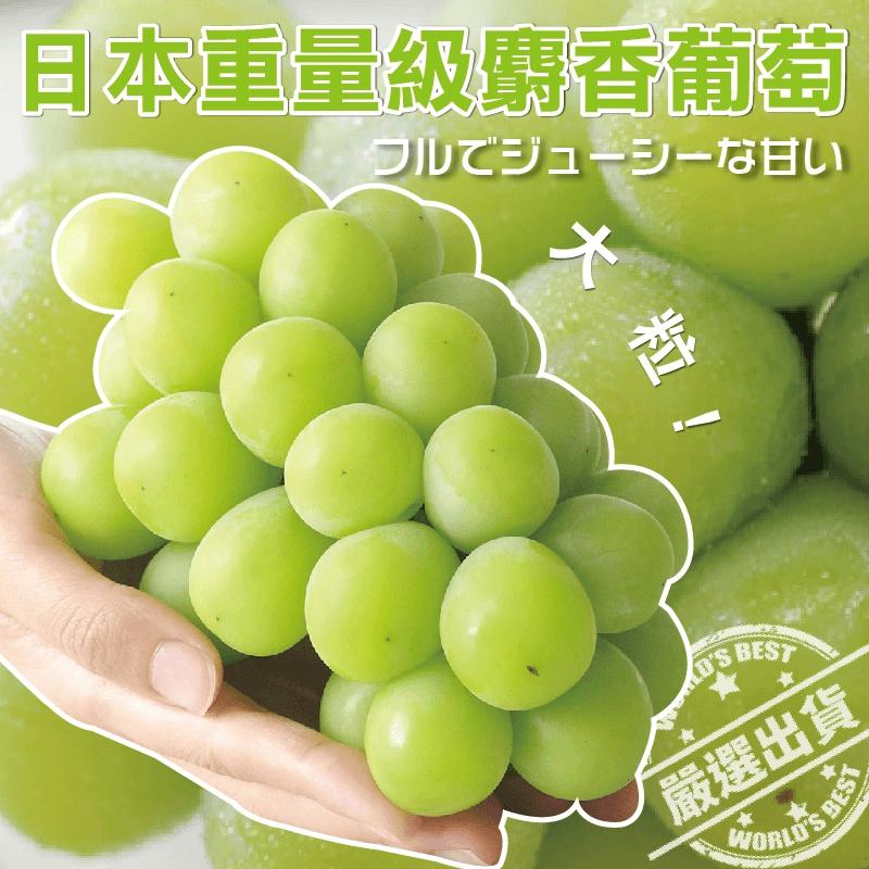 日本極品甜無籽麝香葡萄,今日結帳再打85折!