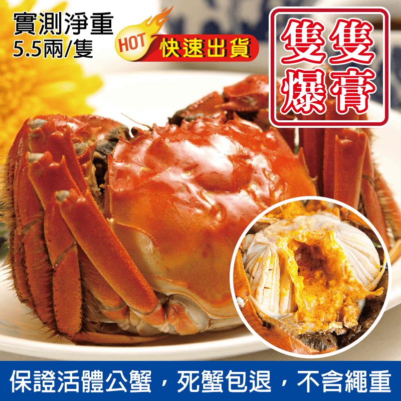 陽澄湖5.5兩A級大閘蟹,今日結帳再打85折