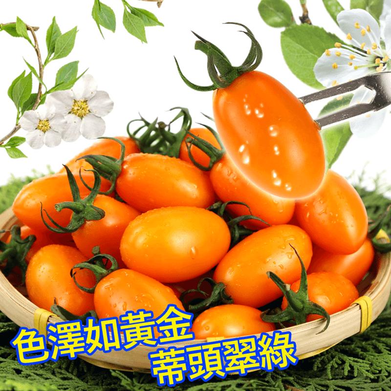 美濃人氣橙蜜香番茄禮盒,限時破盤再打82折!