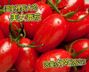 嘉義爆漿溫室美女番茄,今日結帳再打88折
