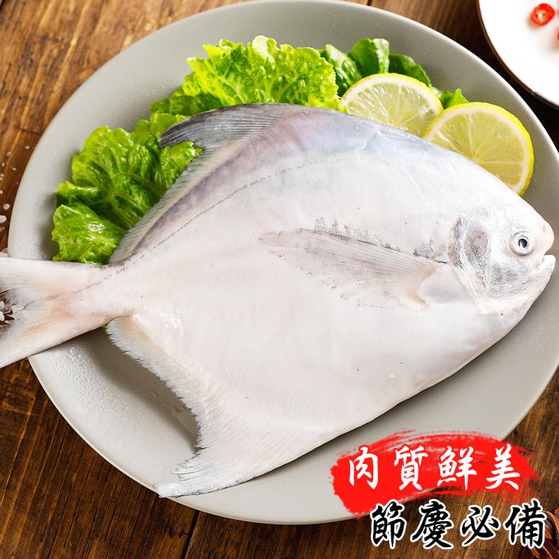 超新鮮頂級大隻白鯧魚,今日結帳再打85折!