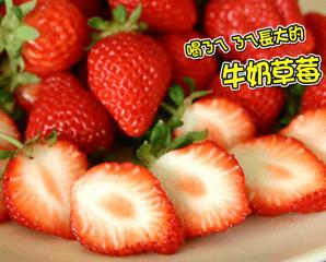 香甜多汁大湖牛奶草莓,限時5.7折,今日結帳再享加碼折扣