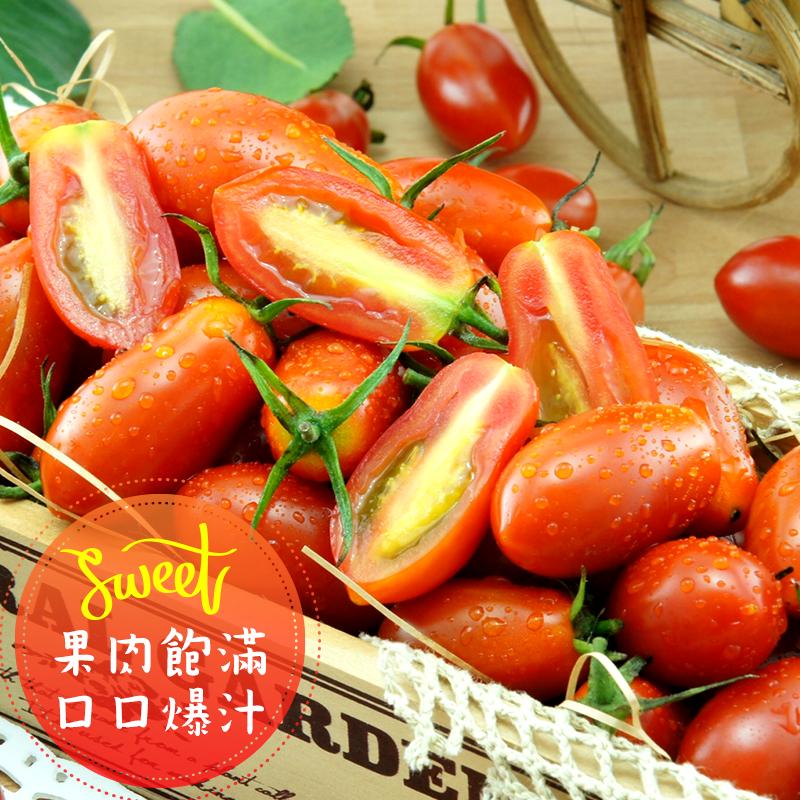 苗栗高山鮮採聖女小番茄,限時5.0折,請把握機會搶購!