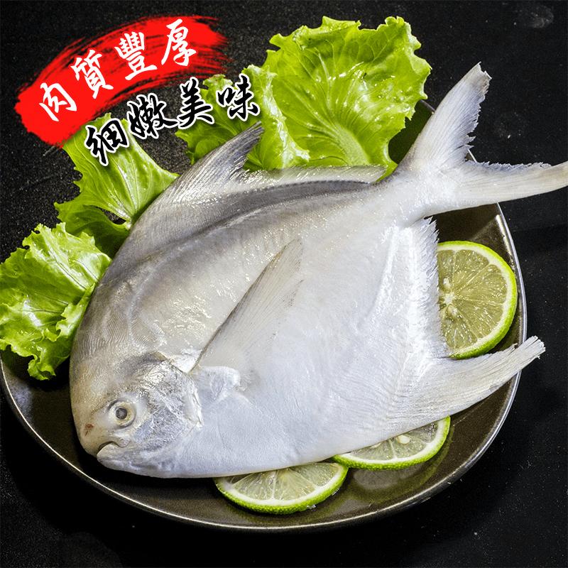 匯鮮市集印度洋野生鮮嫩美白鯧魚,限時破盤再打82折!