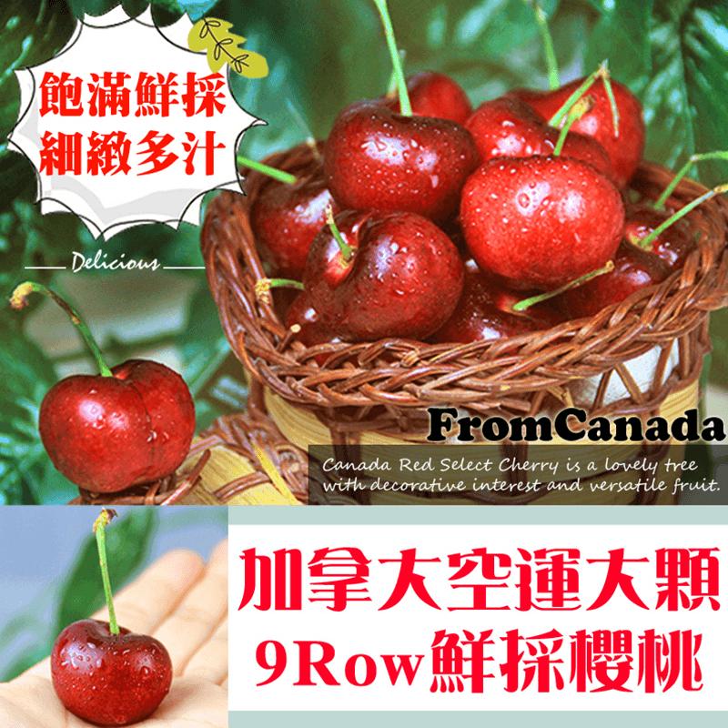 加拿大特鮮甜9R大顆櫻桃,限時4.8折,請把握機會搶購!