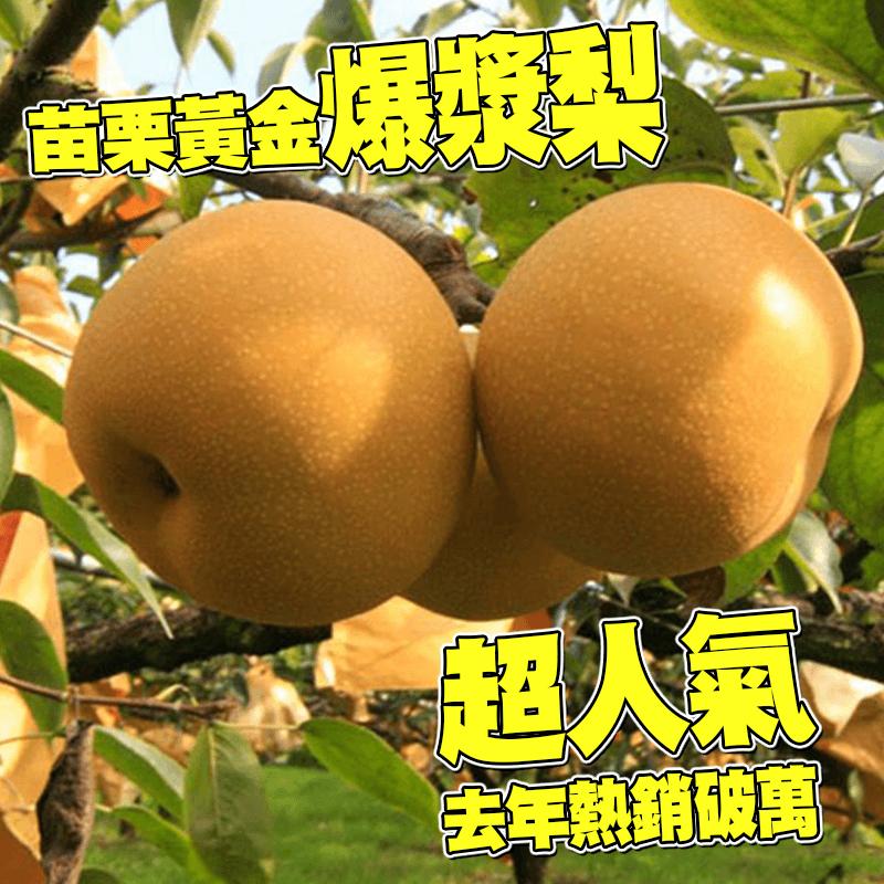 苗栗黃金爆漿水梨禮盒,今日結帳再打85折!