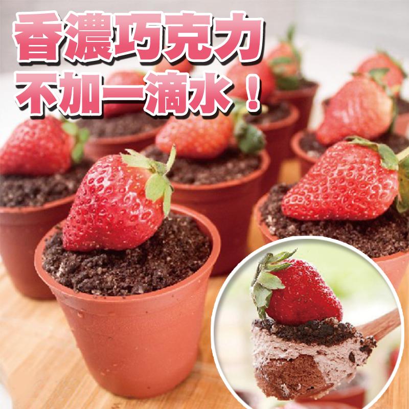 木匠手作草莓盆栽提拉米蘇,今日結帳再打85折!
