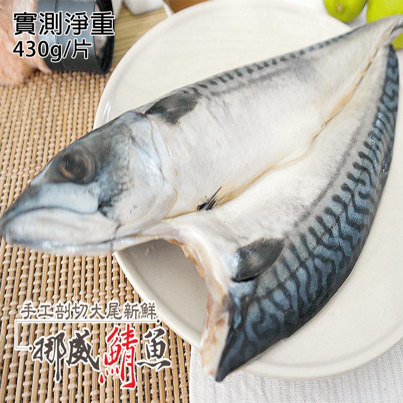 嚴選新鮮挪威大尾鯖魚,本檔全網購最低價!