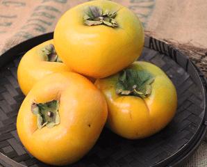 摩天嶺頂級高山甜柿,限時3.9折,今日結帳再享加碼折扣