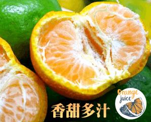驚豔迷你黃金爆汁砂糖橘,限時6.6折,今日結帳再享加碼折扣