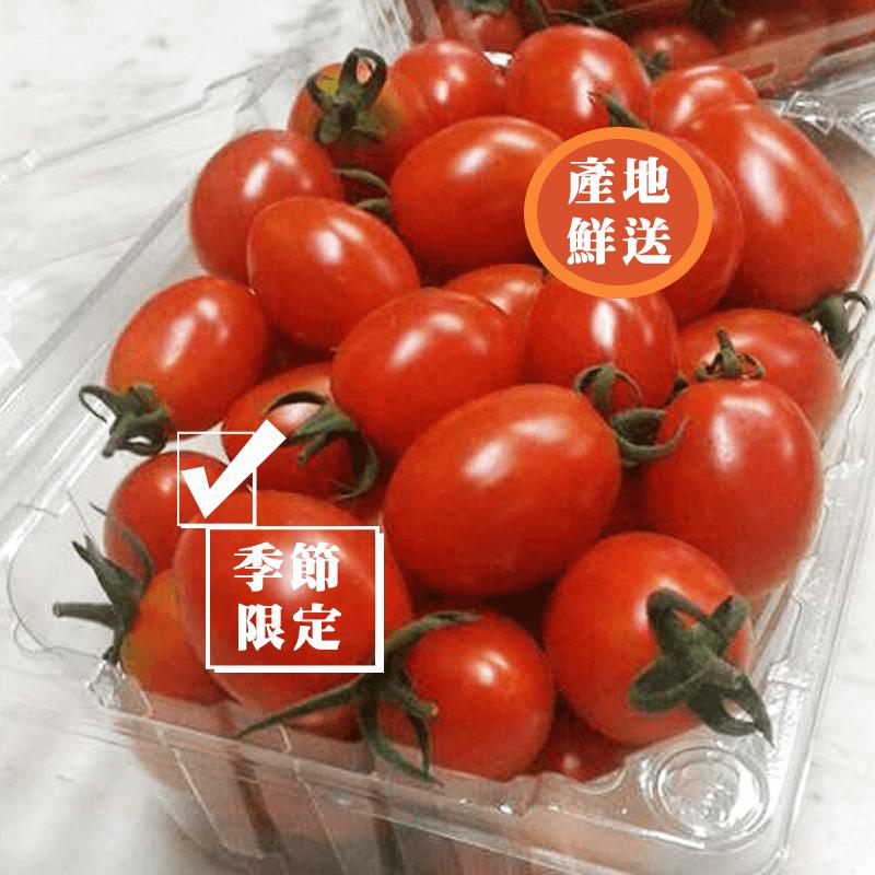 在地小農直送小女番茄,限時破盤再打82折!