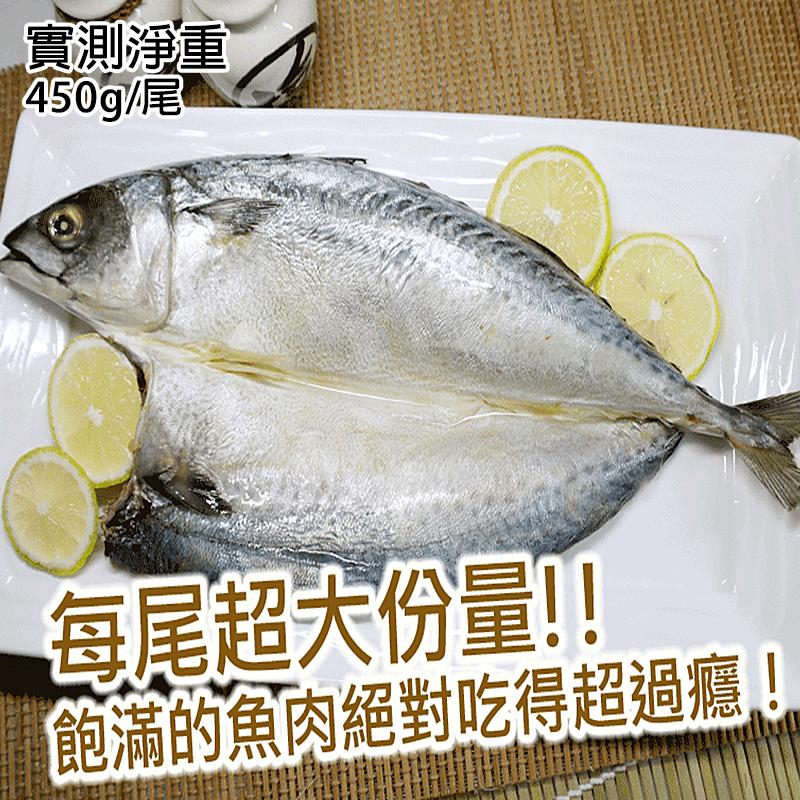 南方澳薄鹽巨大整尾鯖魚,本檔全網購最低價!