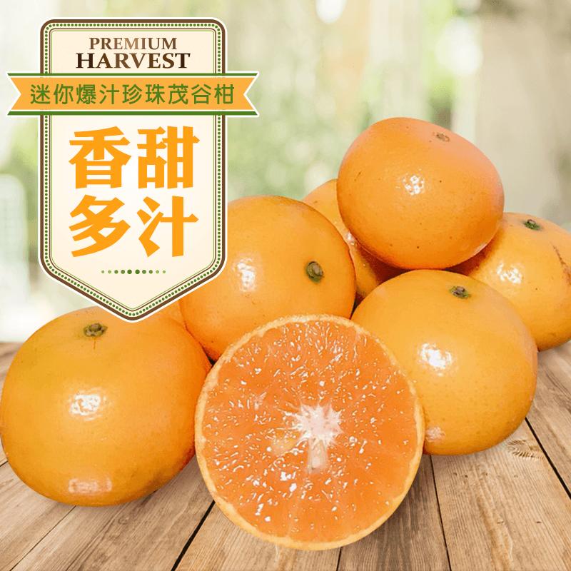 迷你爆汁珍珠茂谷柑禮盒,本檔全網購最低價!