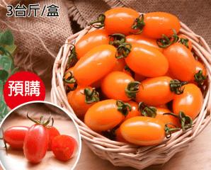 美濃金瑩玉女鮮甜小番茄,限時6.7折,今日結帳再享加碼折扣