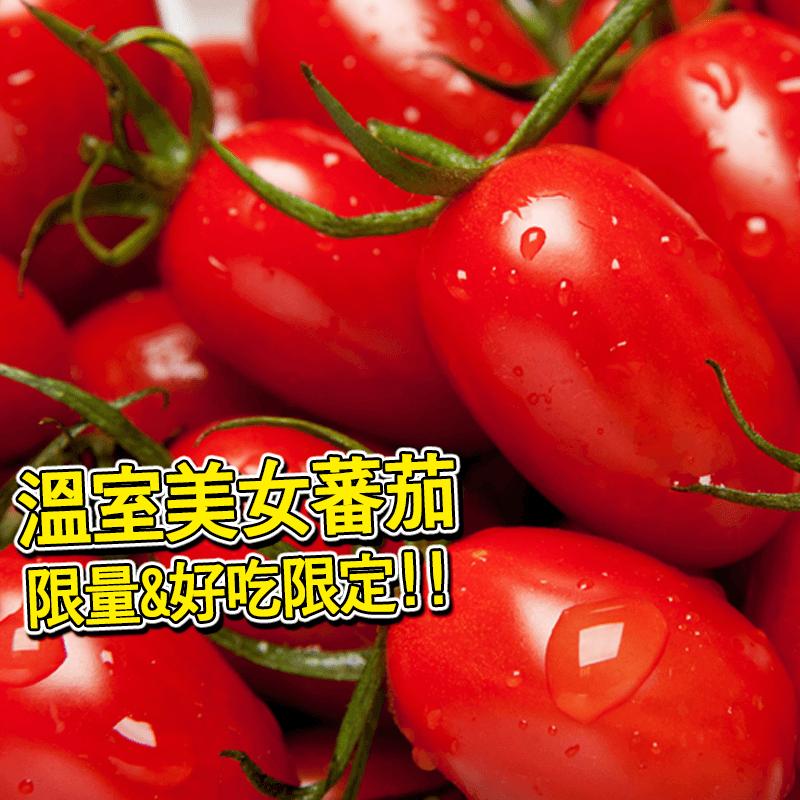 嘉義民雄溫室美女番茄,今日結帳再打85折!