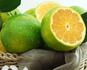 嘉義梅山爆汁鮮甜蜜椪柑,限時5.6折,今日結帳再享加碼折扣