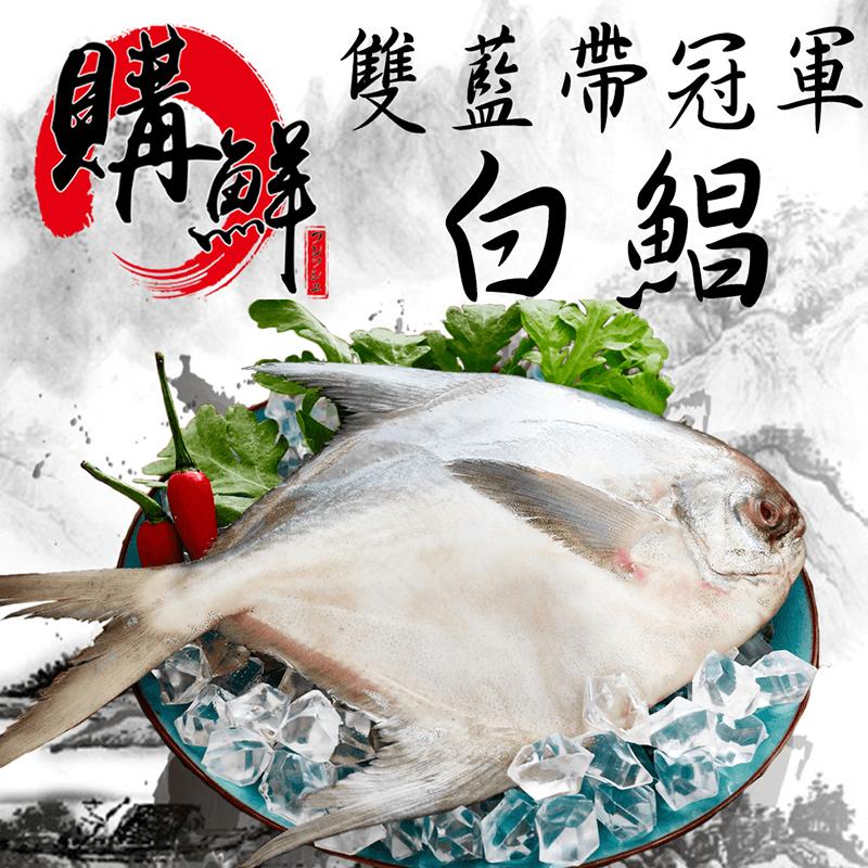 嚴選直送爆規格冠軍白鯧,今日結帳再打85折!