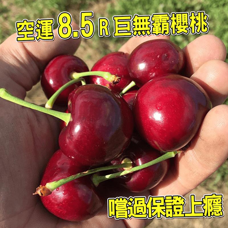 巨無霸美國西北櫻桃8.5R,限時破盤再打82折!