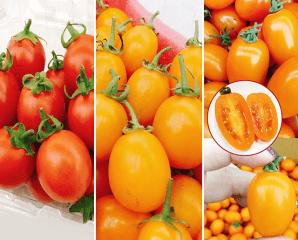 晶瑩多汁小番茄任選,限時3.3折,今日結帳再享加碼折扣