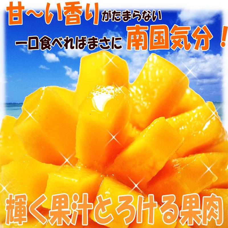 屏東枋山愛文冷凍芒果肉,今日結帳再打85折!