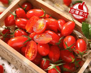 南投頂級蜜3小蕃茄,限時6.3折