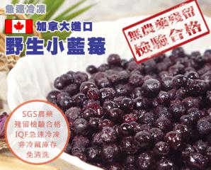 加拿大進口冷凍野生藍莓,限時4.0折,今日結帳再享加碼折扣
