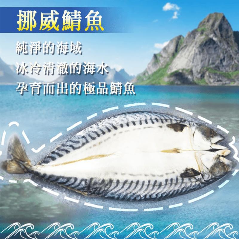 挪威超大鮮嫩薄鹽鯖魚,今日結帳再打85折!
