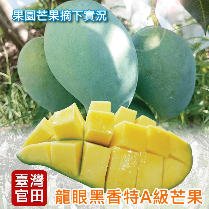 官田龍眼黑香特A級芒果禮盒5台斤,限時3.2折,請把握機會搶購!