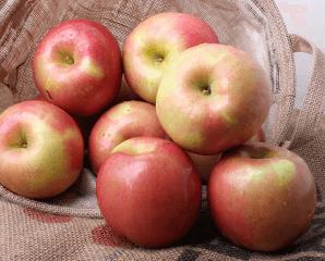 美國富士蘋果禮盒,限時5.1折,今日結帳再享加碼折扣